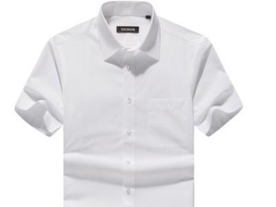 男士夏季商务休闲纯色免烫青中年白衬衣